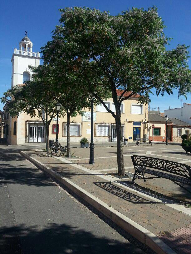 Plaza del Mercado. Villarta de San Juan (Ciudad Real)